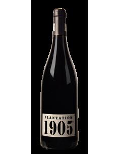 """Domaine Tour Boisée """"Plantation 1905"""" Vin De France Rouge 2018"""
