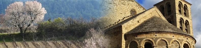 Vins du Minervois issus du Terroir les Côtes Noires